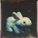 A Harmless Little Bunny by Jill Auville