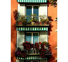 Pretty Swiss Window Box Photographic Print