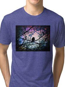 Stain Glass Bird Tri-blend T-Shirt