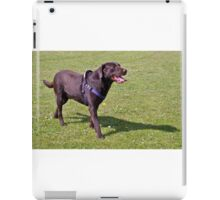 Hot Chocolate Lab A iPad Case/Skin