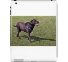 Hot Chocolate Lab B iPad Case/Skin