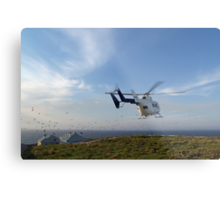 Helicopter Island Metal Print