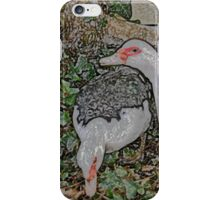 Two Muscovies B iPhone Case/Skin