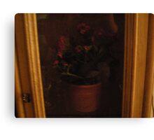 cottage cabinet Canvas Print