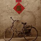 The Bicycle by KLiu
