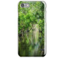 Florence Falls reflections iPhone Case/Skin