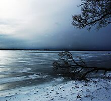 Winter Blue In Belleville Ontario by nikspix