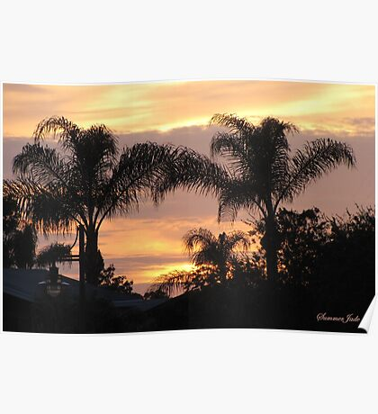 First Day of Spring ~ Florida Sunset  Poster