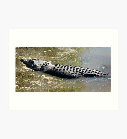 Croc!!! Art Print