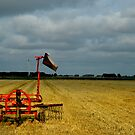 Harvest Time by 945ontwerp