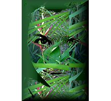 Jungle Of The Mind Photographic Print