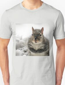 Squirrel Praying For Food In Snow At My Door T-Shirt