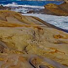 A Rocky Coast by Barbara  Brown
