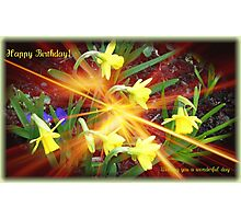 Extra Terrestrial Daffodils Birthday Card Photographic Print