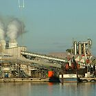 Fishmeal Production by emem