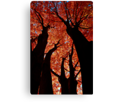 The Giants Canvas Print