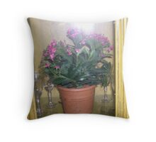 lighted cottage cabinet  Throw Pillow