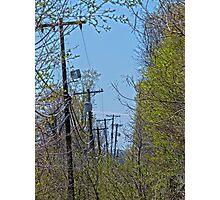 Telephone Poles Photographic Print
