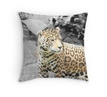 Camoflage?? Throw Pillow