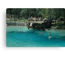 Blue Springs Divers Canvas Print