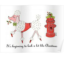 Christmas Poodle Poster