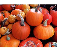Pumpkins a'plenty Photographic Print