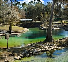 Hart Spring in Winter by Stacey Lynn Payne