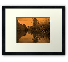 Tangled Limbs Framed Print