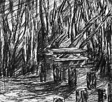 Picnic in the Redwoods, Pffeifer Park, Big Sur by Barbara Sparhawk