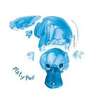 Platypus by Jon Hawley