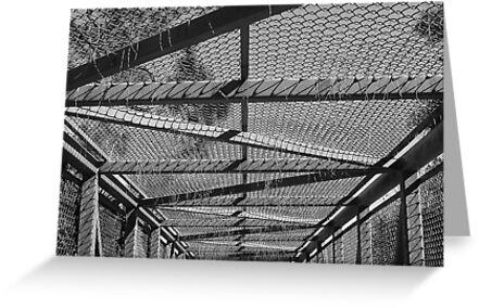 Bridge Topper by Ferguson
