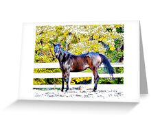 Horse and Fence Greeting Card