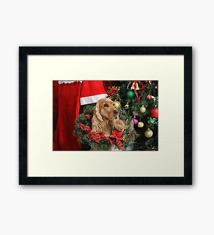 Merry Cocker Christmas Framed Print