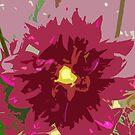 Cutout Flower by Ferguson