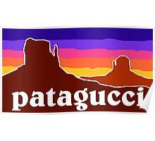 Patagucci Canyons Poster