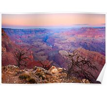 Grand Canyon Dawn Poster