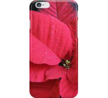 poinsettia flower iPhone Case/Skin