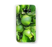 lemon on the tree Samsung Galaxy Case/Skin