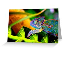 Chameleon Greeting Card