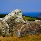 ancient stone by kathywaldron