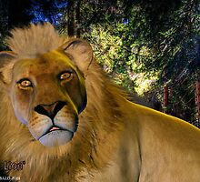 Gentle Lion by Kristie Theobald