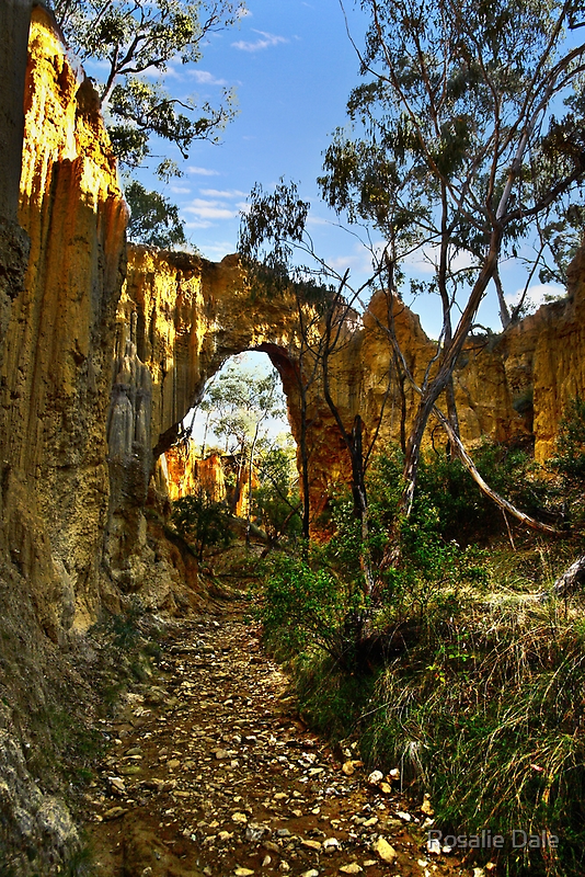 Golden Gully, Tambaroora - Larger arch by Rosalie Dale