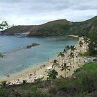 Hawaii Beach by Lainey Simon