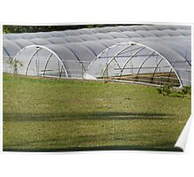 greenhouse in the farm Poster