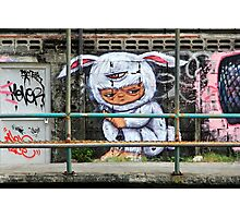 Street Art: global edition # 65 Photographic Print