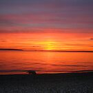 sunset beach by ibanezfrog