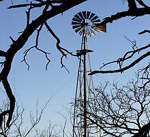 Windmill in the Trees by Joe Hewitt