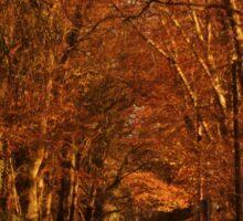 Piltown Tree Avenue Sticker