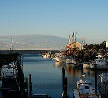 Ocean Springs Harbor by Jonicool