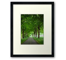 Old Traditional Countryroad with Oak Trees Framed Print
